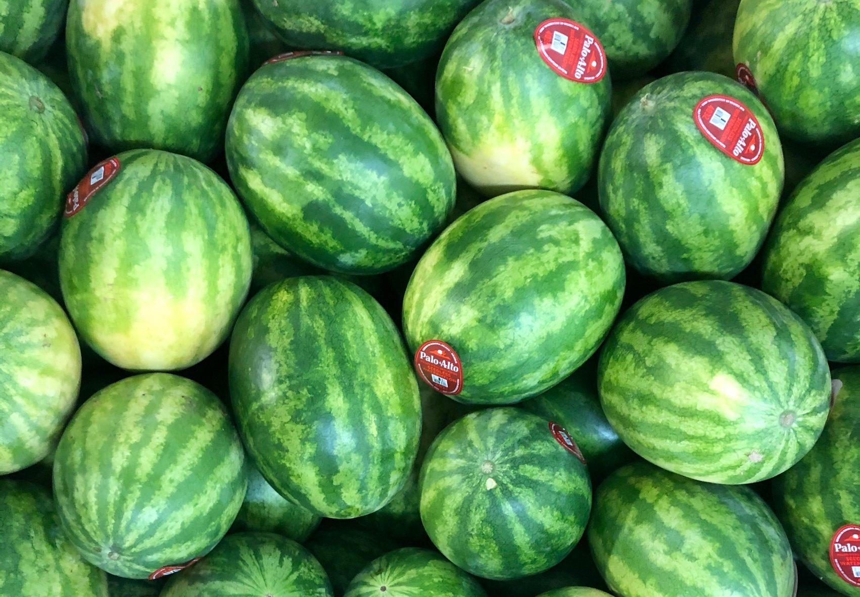 watermelon bin